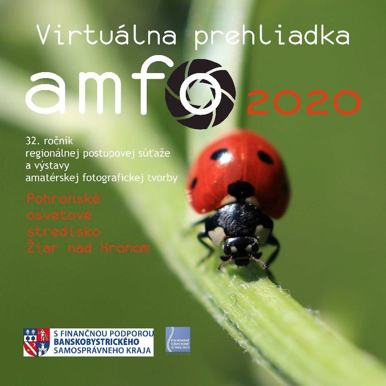 amfo-virtual-cover.jpg